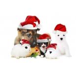 Jõulutooted