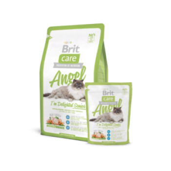 "Brit Care eakale kassile ""Angel I´m Delighted Senior"" 2kg"