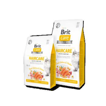 BC kassi kuivtoit GF Haircare Healthy&Shiny 2kg