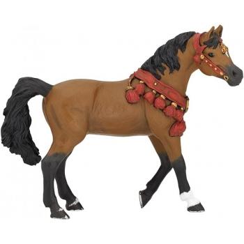 Papo araabia hobune paraadehetes