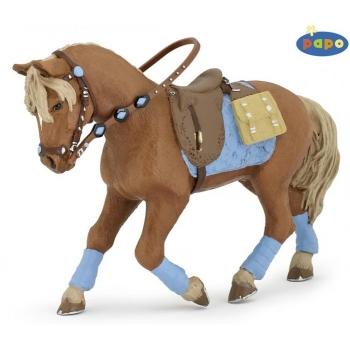 Papo noore ratasaniku hobune