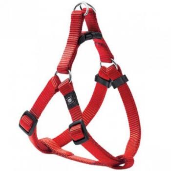 Koera traksid Step & Go Ziggi red 40-70cm 25mm