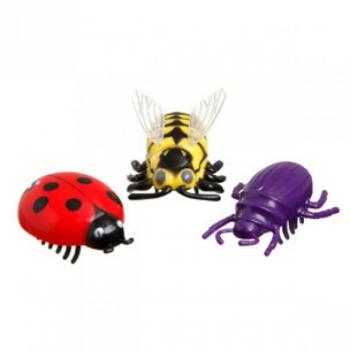 Beetle kassi mänguasi elect. bee/ladybug/spider