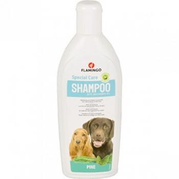 Šampoon männiekstraktiga 300ml