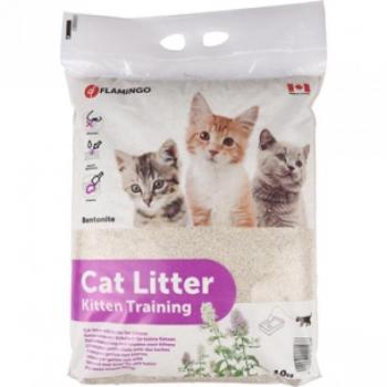Kassiliiv kassipoegadele 10kg