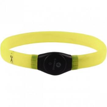 Koera LED kaelarihm VISIO LIGHT JUMBO kollane 35/64cm 7mm