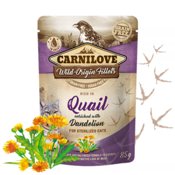 CL CAT POUCH QUAIL WITH DANDELION 85G