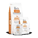 Brit Care keskmise kasvuga täiskasvanud koerale Lamba&Riisiga 1  kg