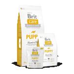 BRIT CARE igat tõugu kutsikale Lamba&Riisiga 12kg
