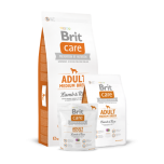 BRIT CARE keskmist kasvu täiskasvanud koerale Lamba&Riisiga 3kg