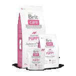 Brit Care Kutsikale Lõhe&Kartuliga 3kg