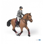 PAPO Competition horse & rider