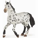 PAPO must appaloosa hobune