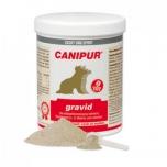 Canipur - gravid 1000g - alates tiinuse 5. nädalast