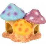 Hamstri majake Fantasia Mushroom Trio