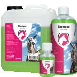 Shampoo Excellent with Aloe Vera 500ml