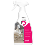 Hi Gloss Clean Spray 500ml