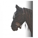 Fly mask Flyshield fringes- XS