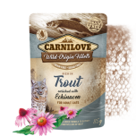 CL CAT POUCH TROUT WITH ECHINACEA 85G