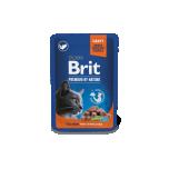 BP einekotike steriliseeritud kassile Lõhe kastmes 100g