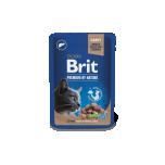 BP einekotike steriliseeritud kassile Maks kastmes 100g